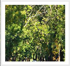 Carretera de vuelta Fotografia digital Canos Eos 2144 x 2923 4,7 Mb 2009