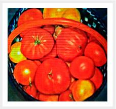 Tomates-hurdanos-1--Fuera-de-Serie-obra-antigua--81-x-100-cm---Oleo-sobre-lienzopeq